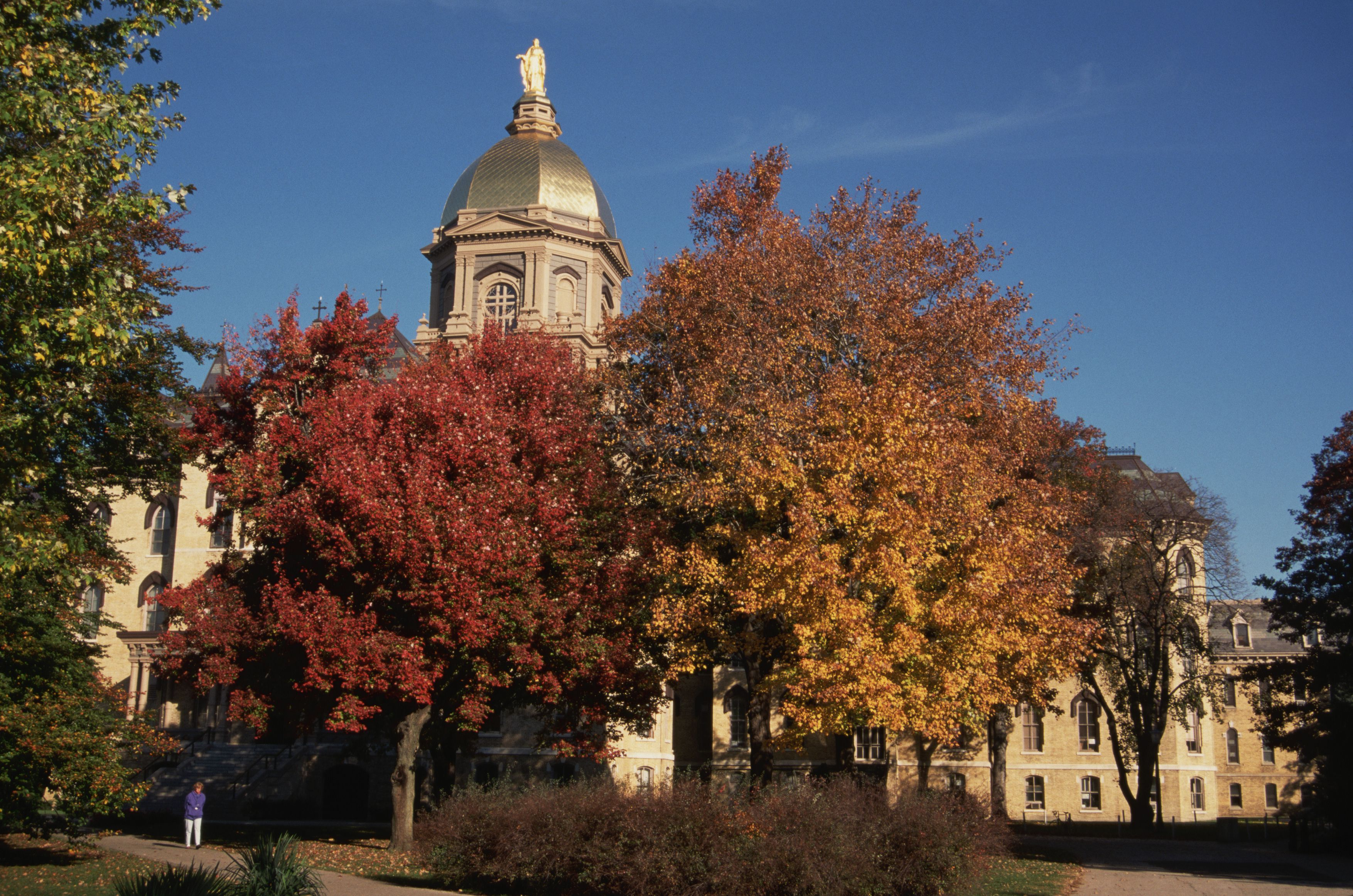Autumn Foliage on the Notre Dame Campus