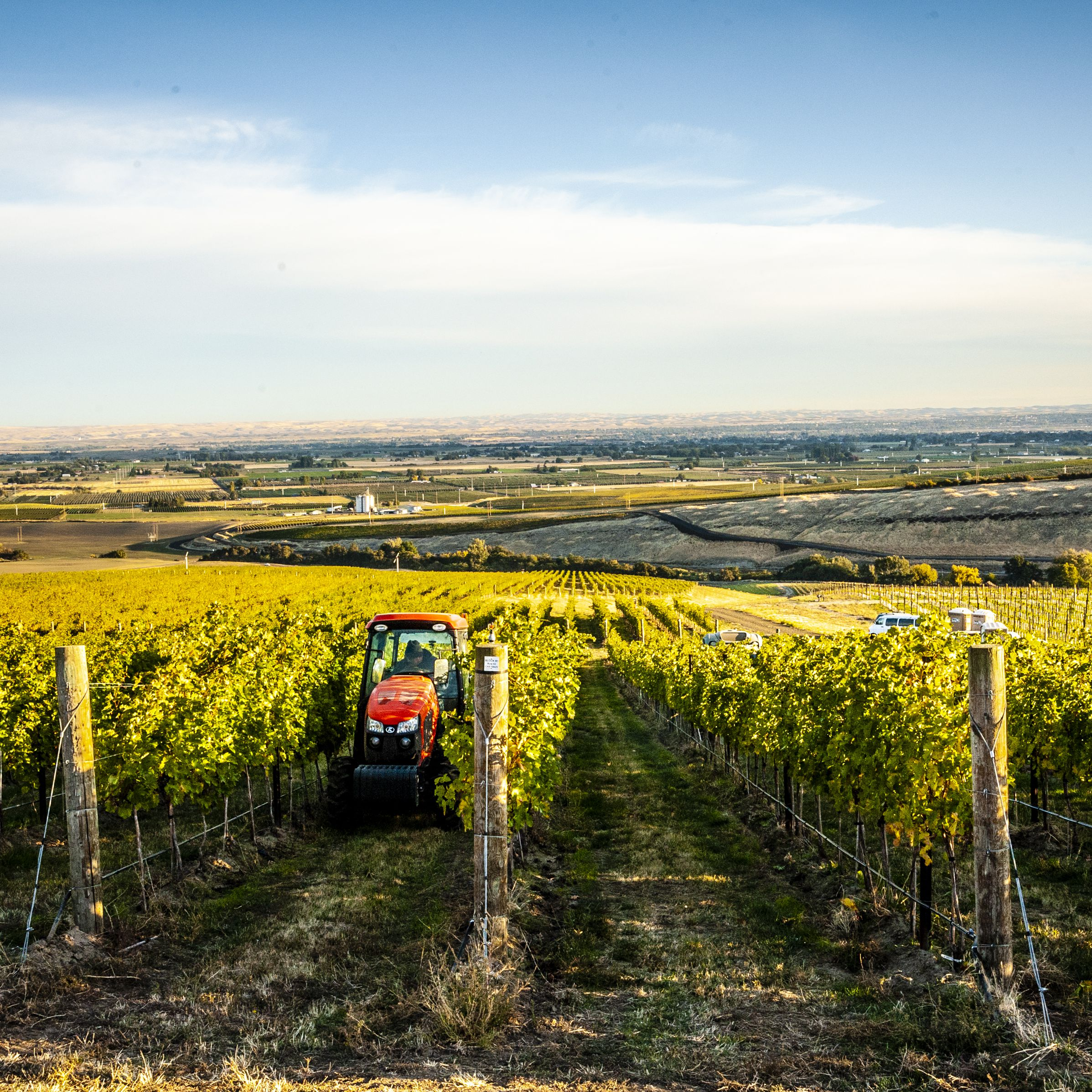The Wine and Food Lover's Guide to Walla Walla, Washington