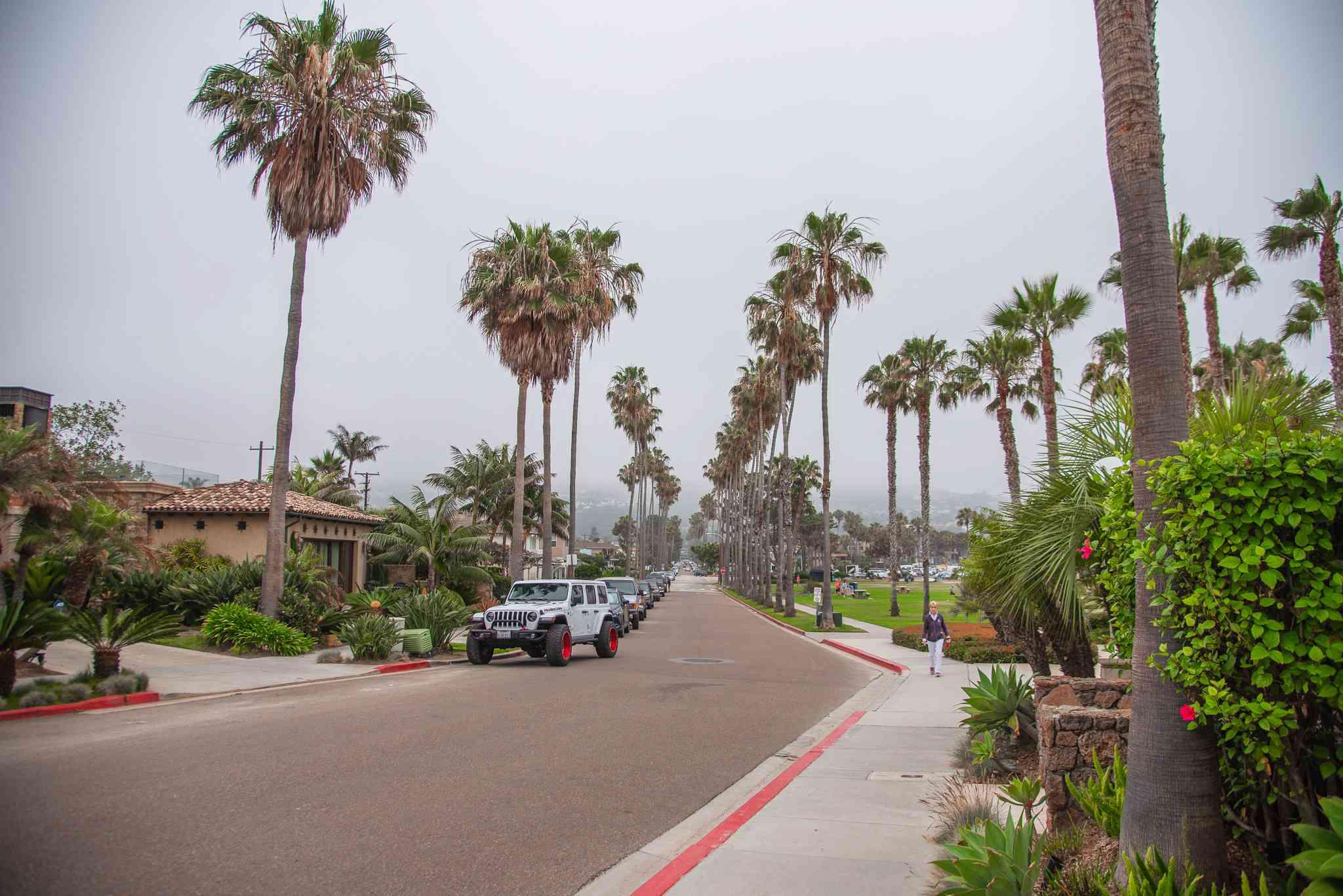 A street in La Jolla