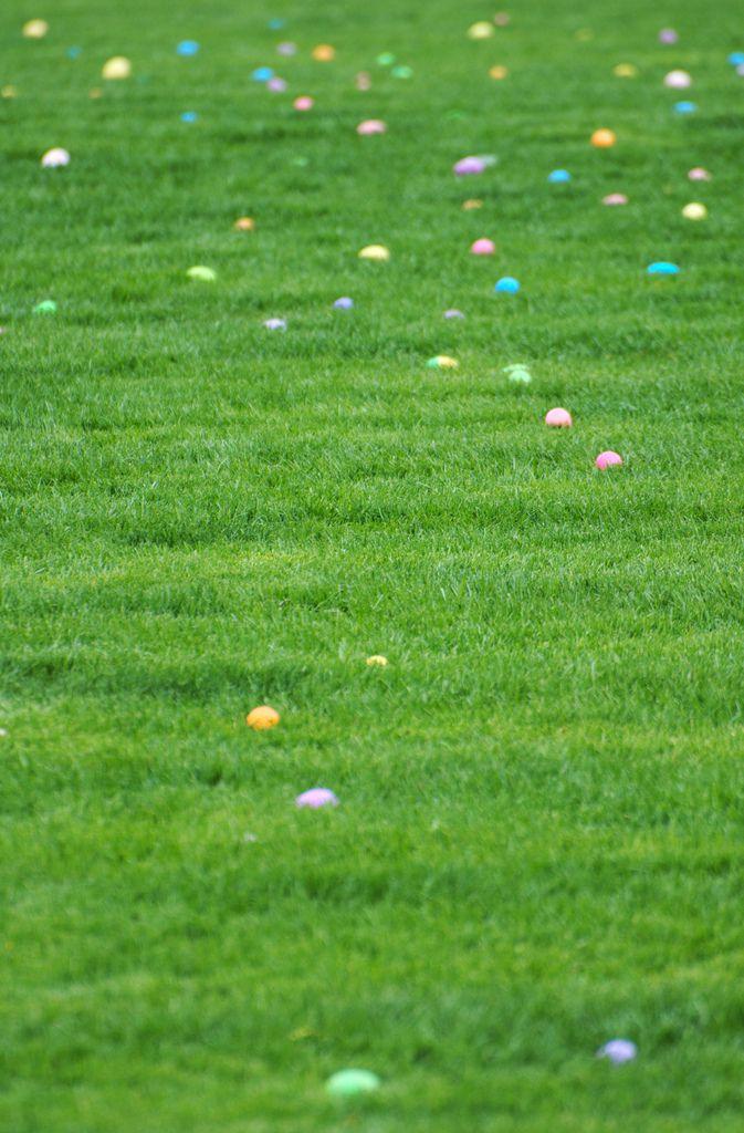 Easter_Eggs_Flickr_Philip_Dean.jpg