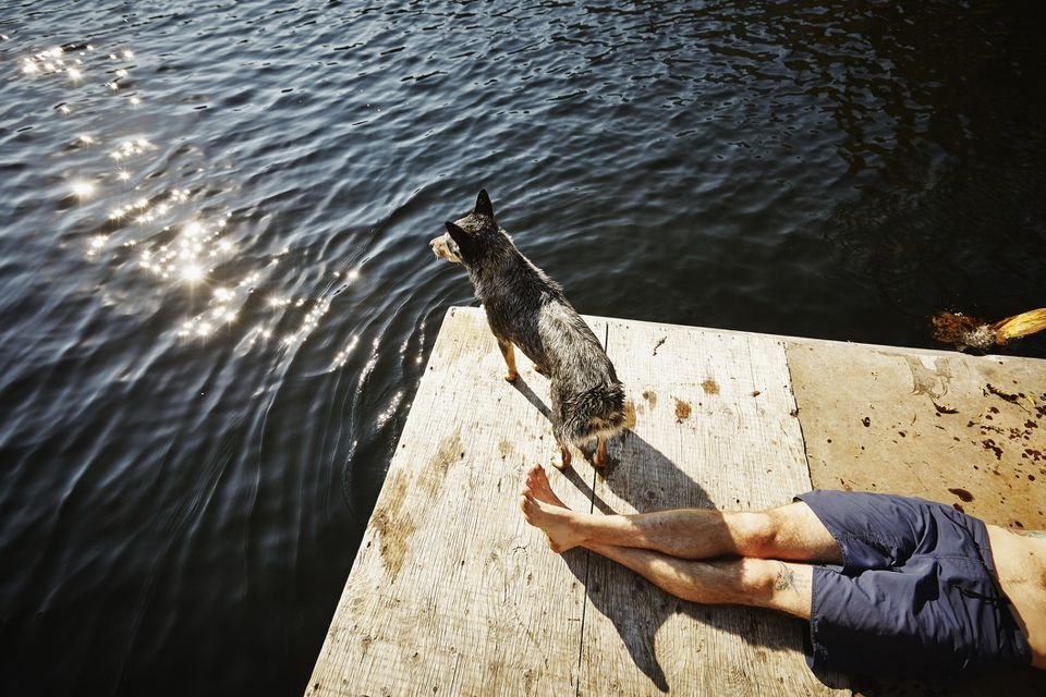 Man lying on dock with dog