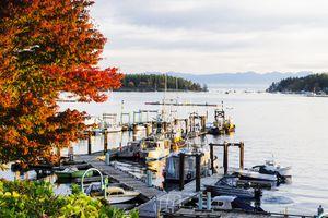 The Nanaimo harbor with pleasure boats and fishing vessels in Nanaimo, British Columbia.