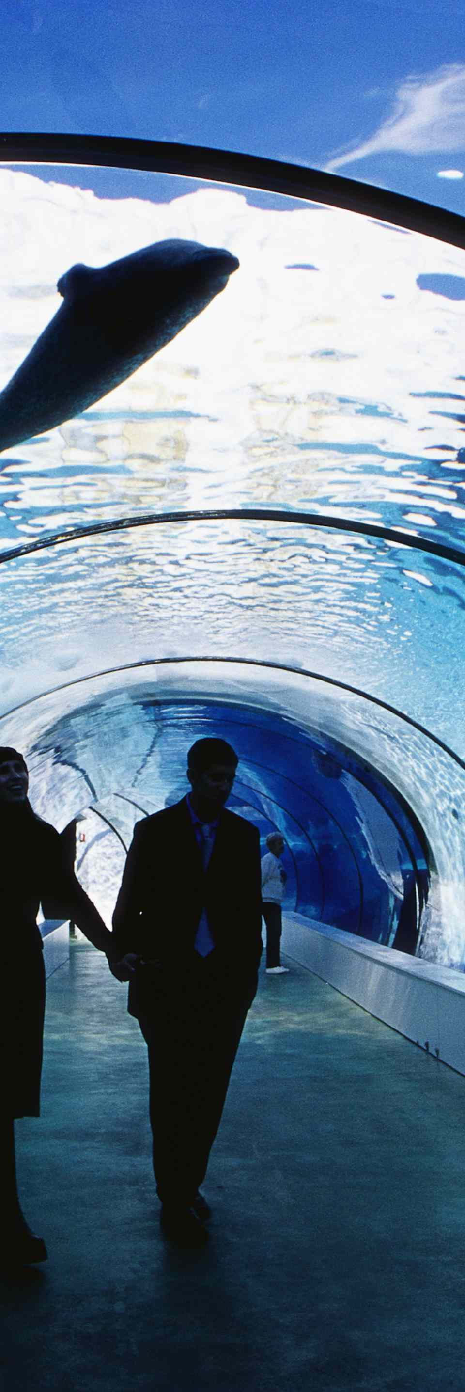 Couple Walking in Underwater Tunnel