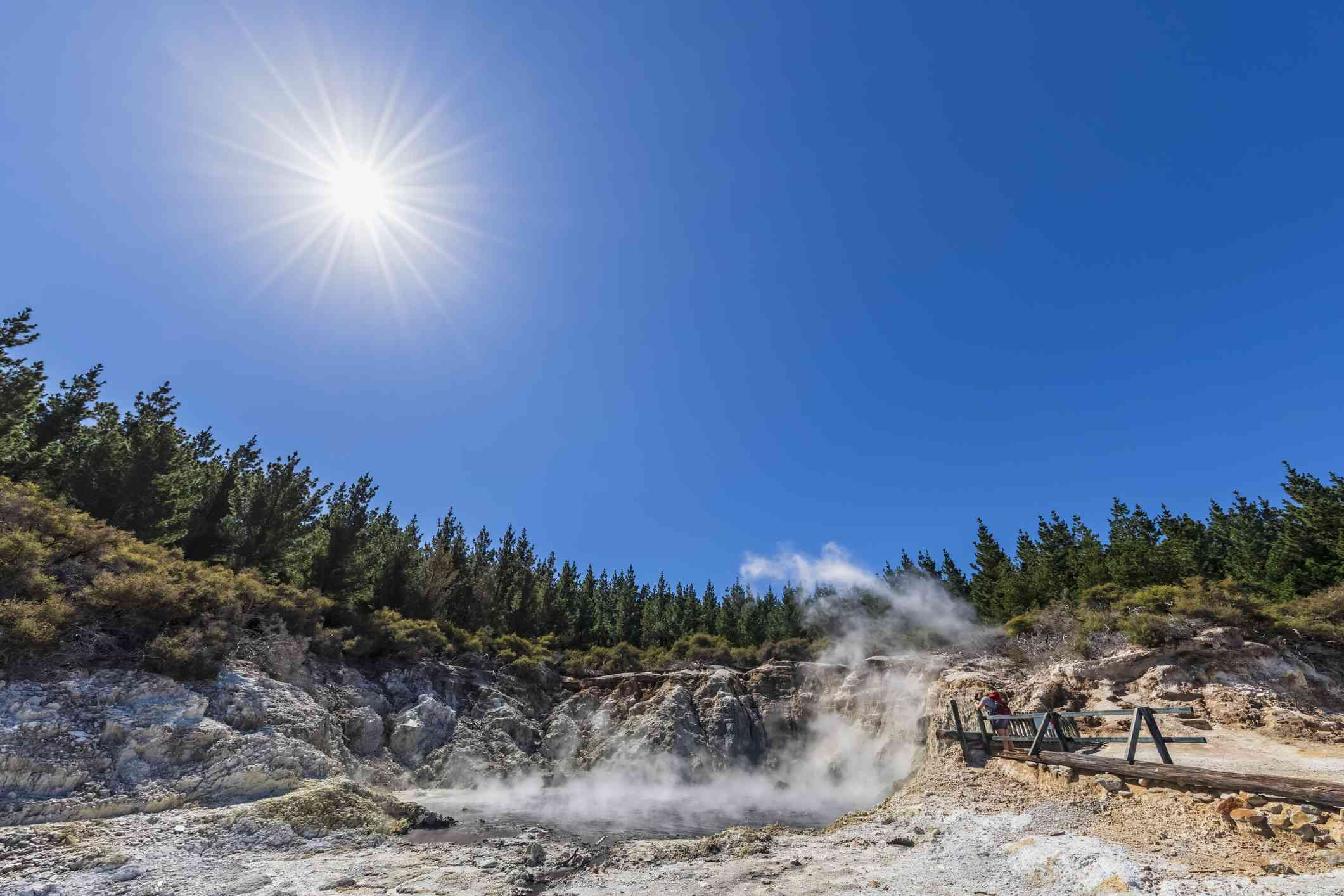 steaming hot spring surrounded by evergreen trees with the sun beaming overhead