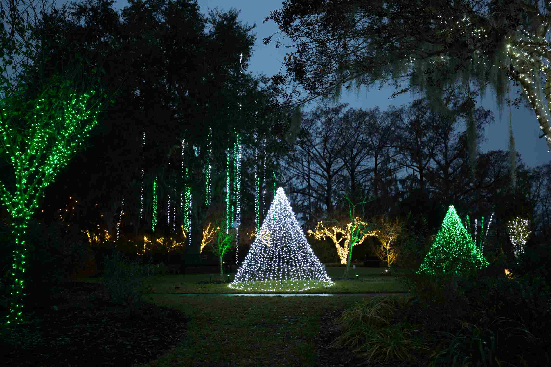 Lights of the Brookgreen Gardens at the Night of a Thousand Candles