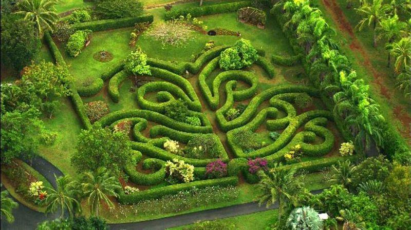 Overview Of Kauai S Top Botanical Gardens