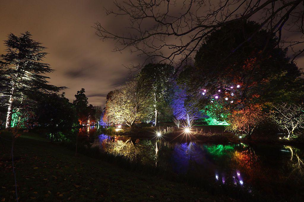 Enchanted Woodland at Syon Park in London