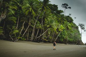 Solo Traveller Hiking in Costa Rica