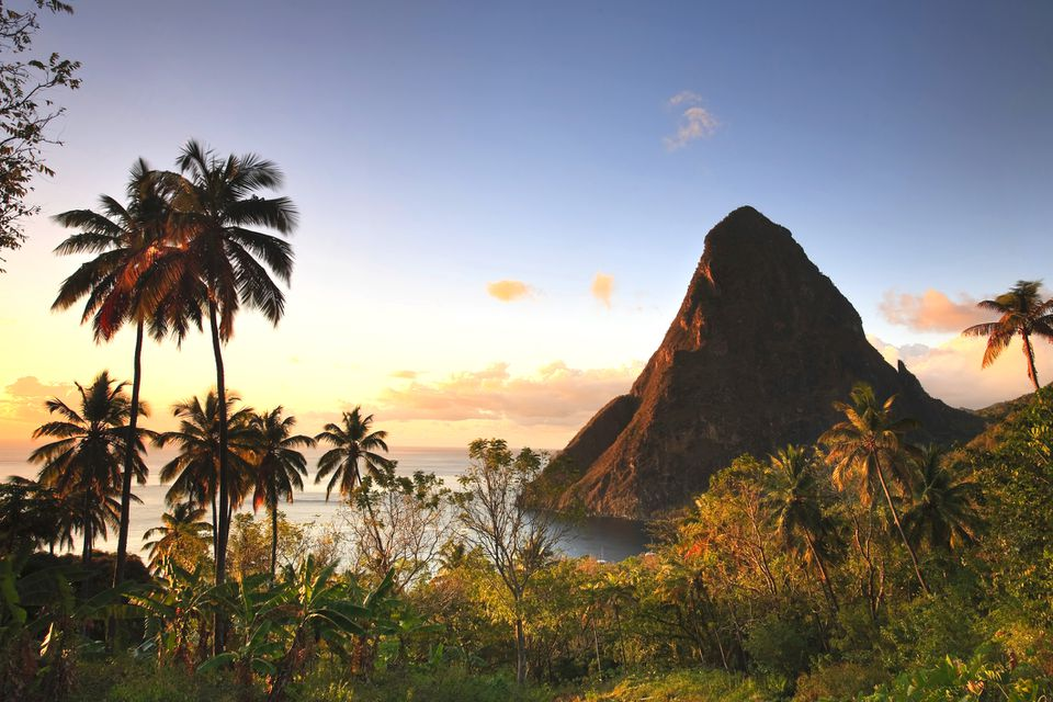 View of palm trees and Grand piton mountain in St lucia at sunset