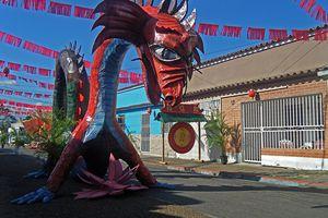 Carnaval en Maturin