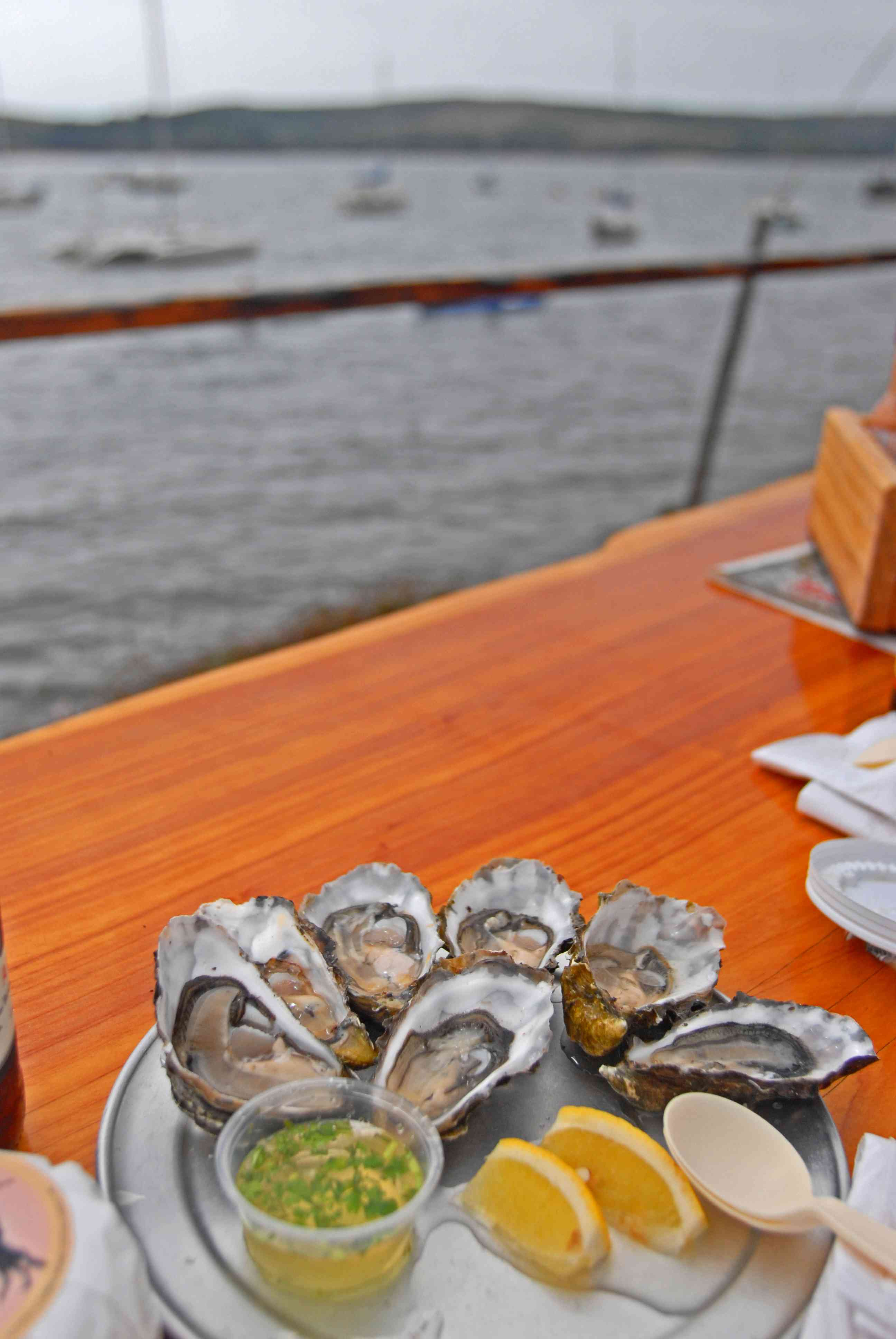 Oysters at Tomales Bay