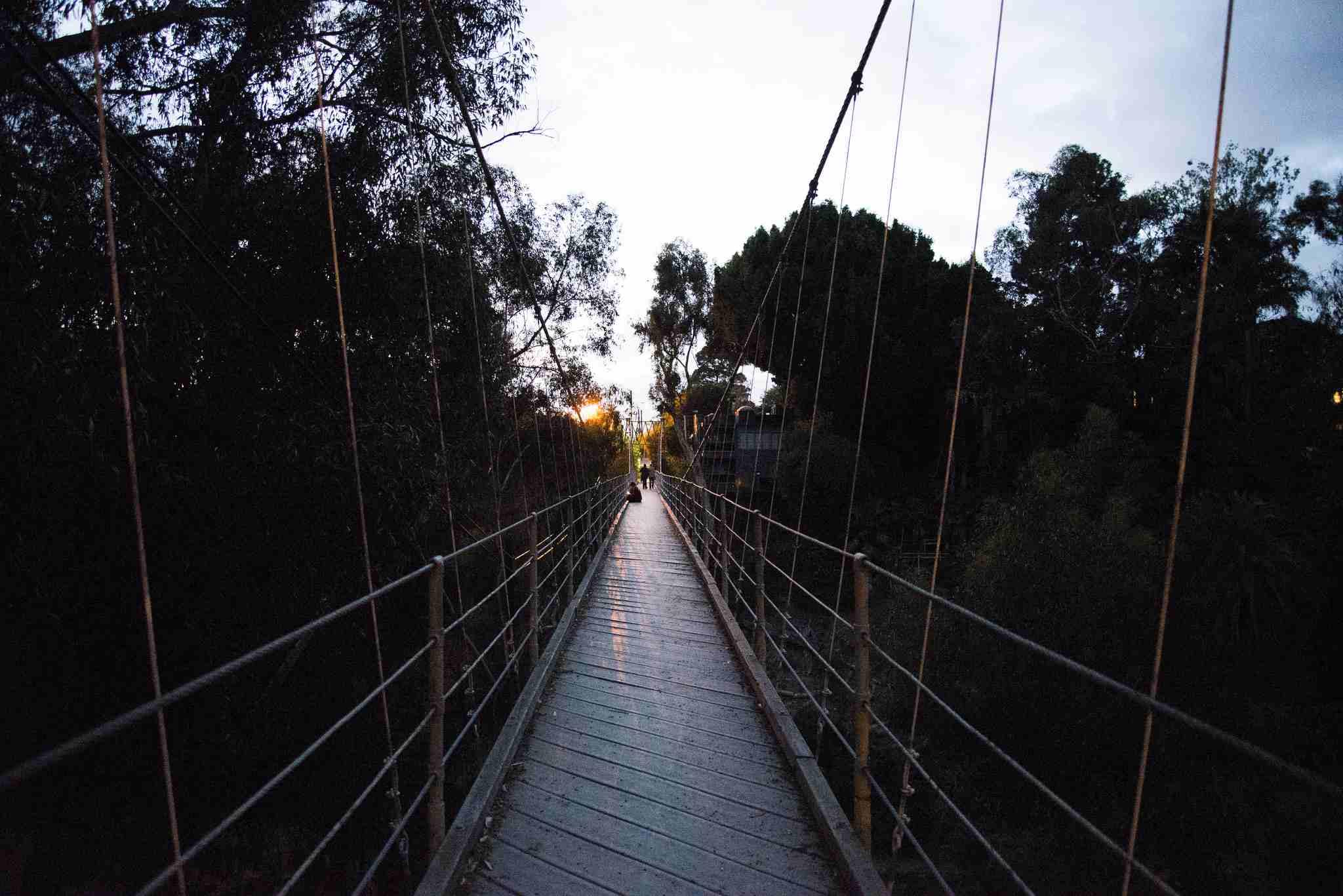 Puente colgante de la calle Spruce