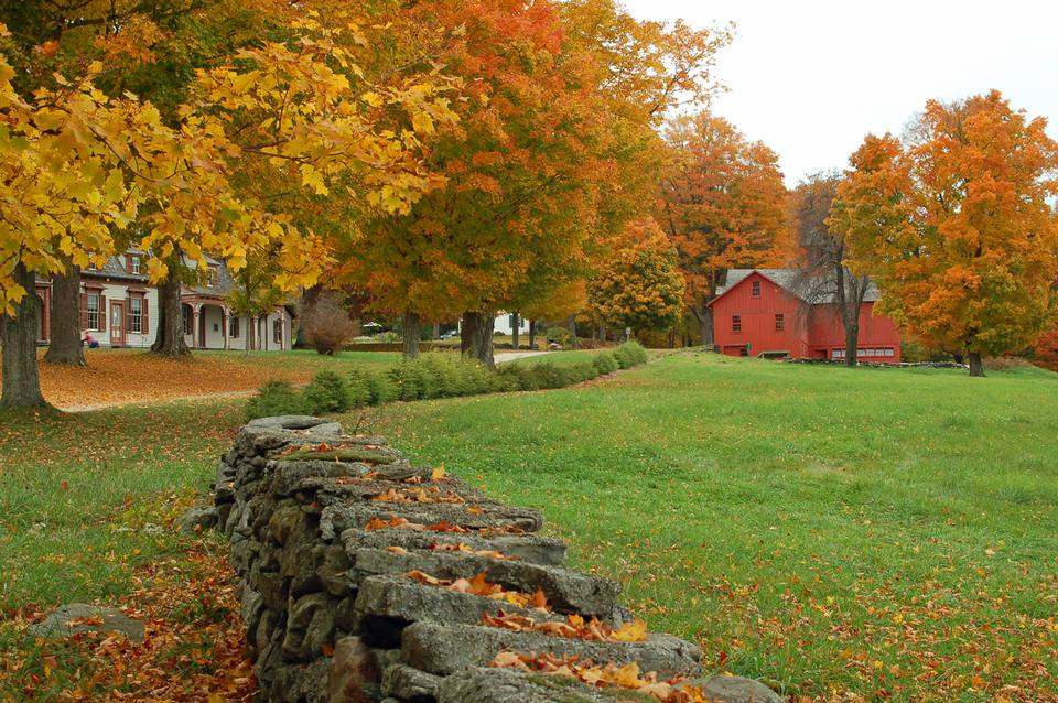 New England Country Lane in the Fall