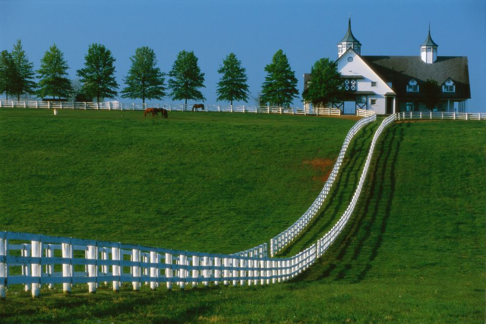 Manchester Farm in Kentucky