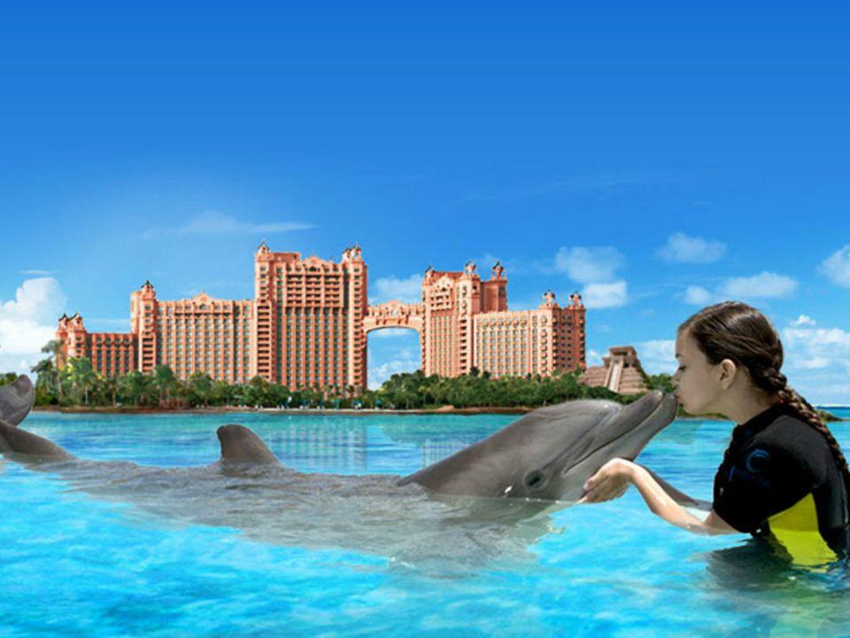10 Epic Kid Friendly Adventures At Atlantis