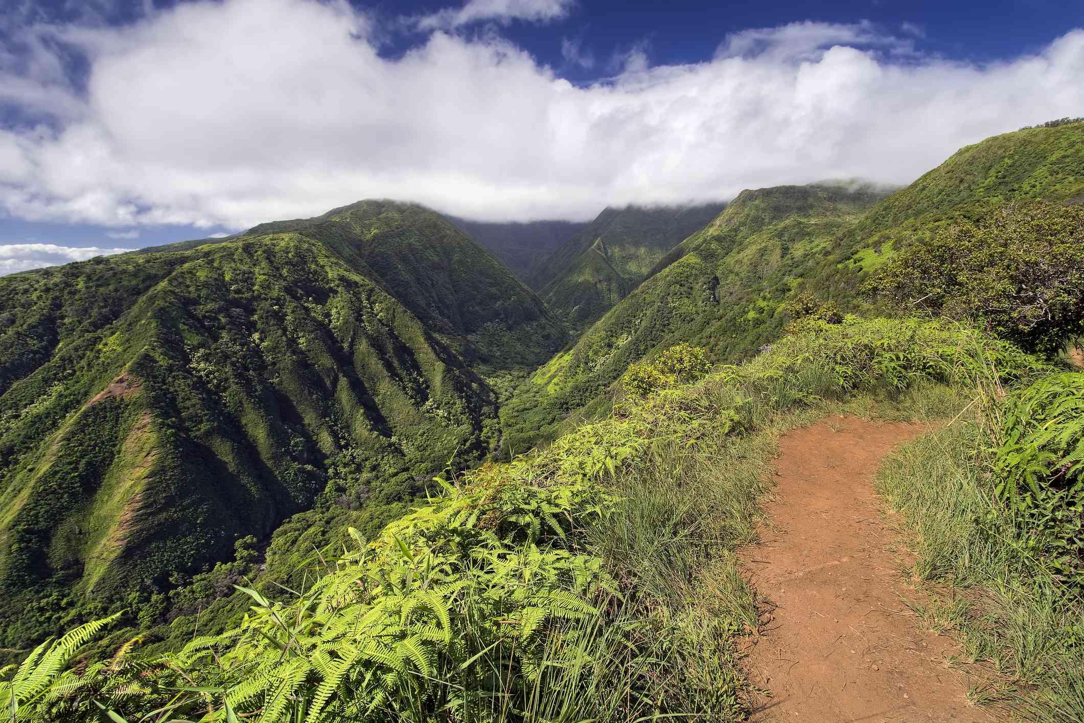 Waihee Ridge Trail in West Maui