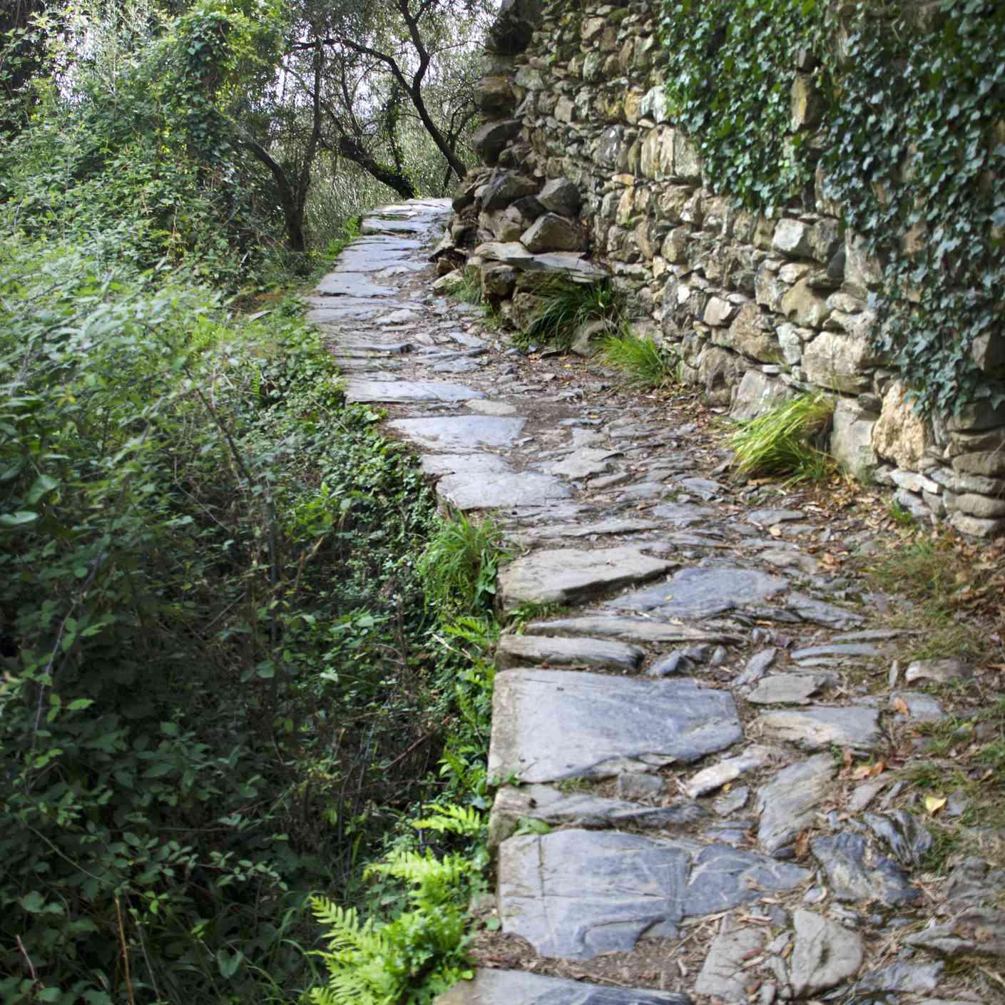 Rocky trail leading out of Corniglia