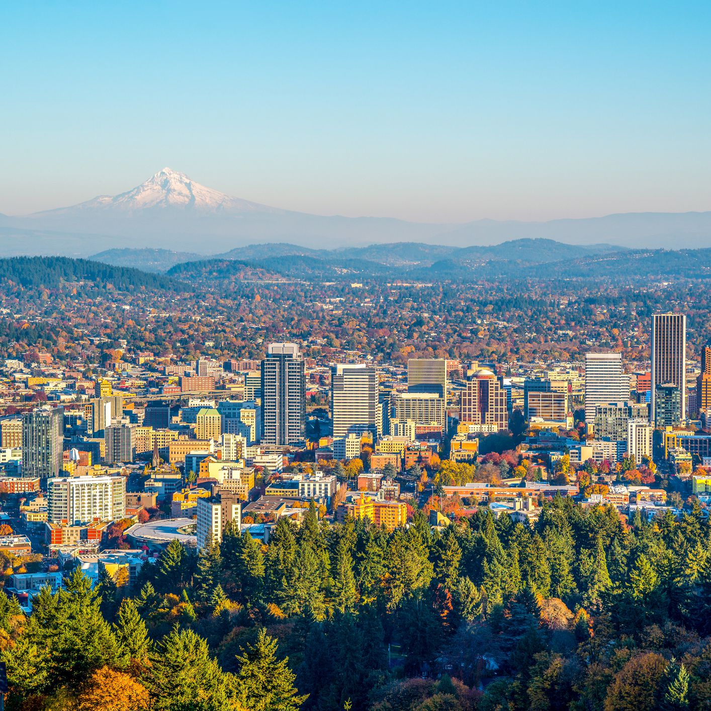 Your Trip to Portland, Oregon: The Complete Guide