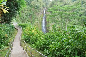 Akaka Falls State Park, Big Island, Hawaii