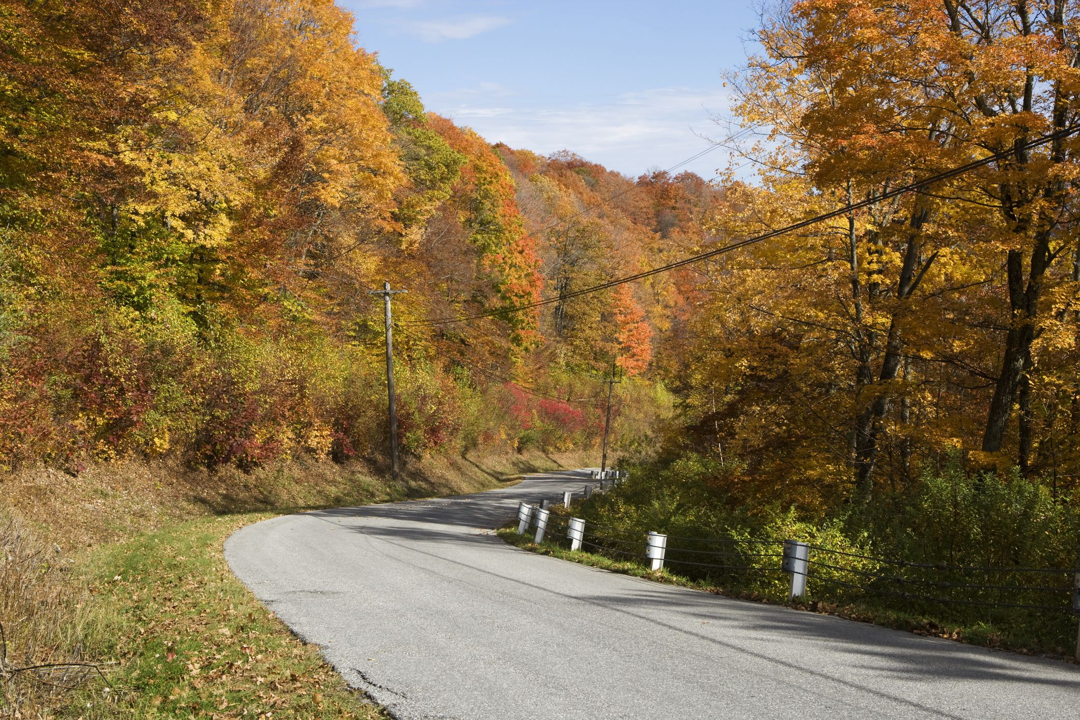 USA, Vermont, Mount Equinox, Skyline Drive, trees with autumn leaves lining road