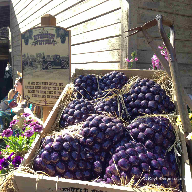 Boyselberry Festival at Knott's Berry Farm