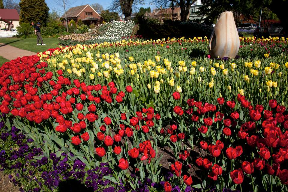 4 Flower Festivals Worth A Visit In Australia