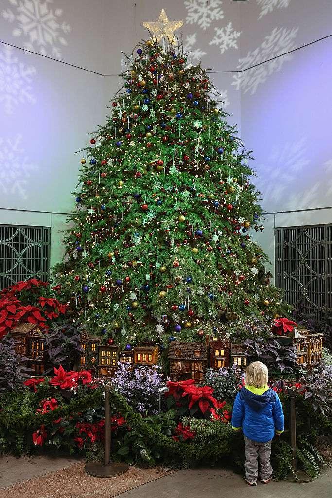 washington dc prepares for the christmas holiday