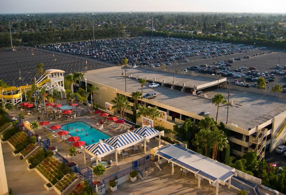 Paradise pier hotel pool deck
