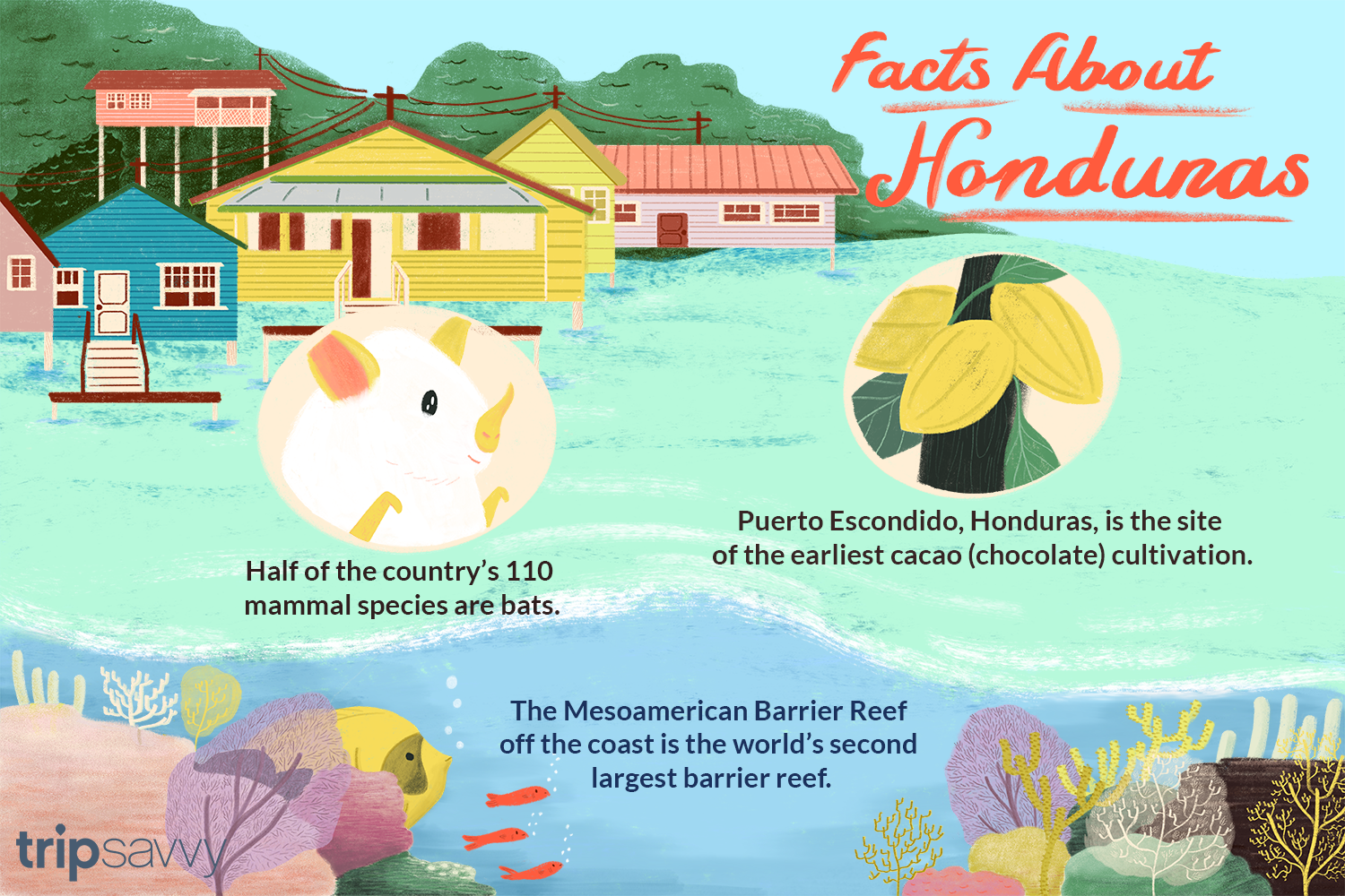 Interesting Facts And Figures On Honduras