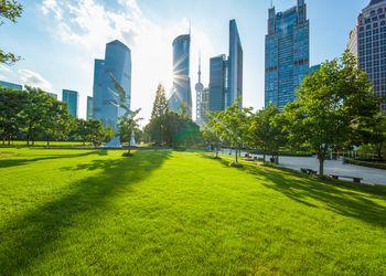 Green lawn at a park in Shanghai