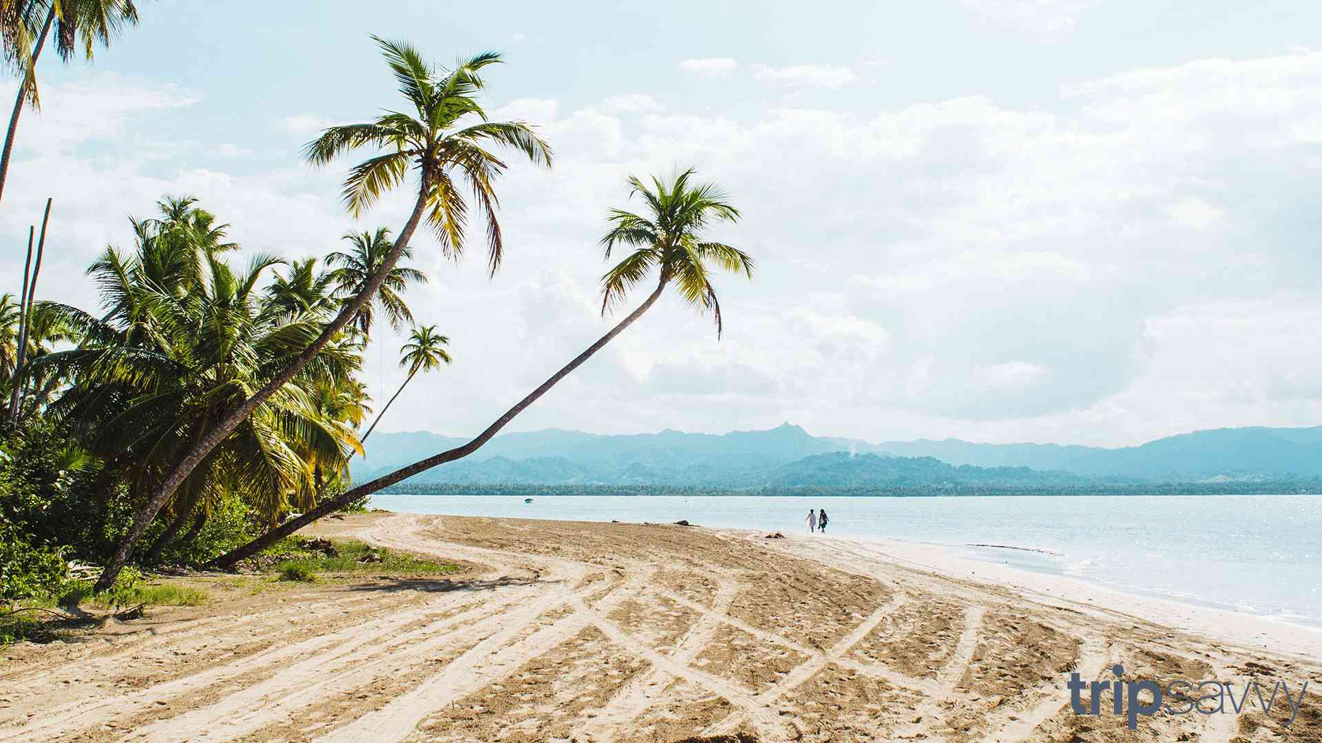 A beach in the DR with two palm trees arching over the sand