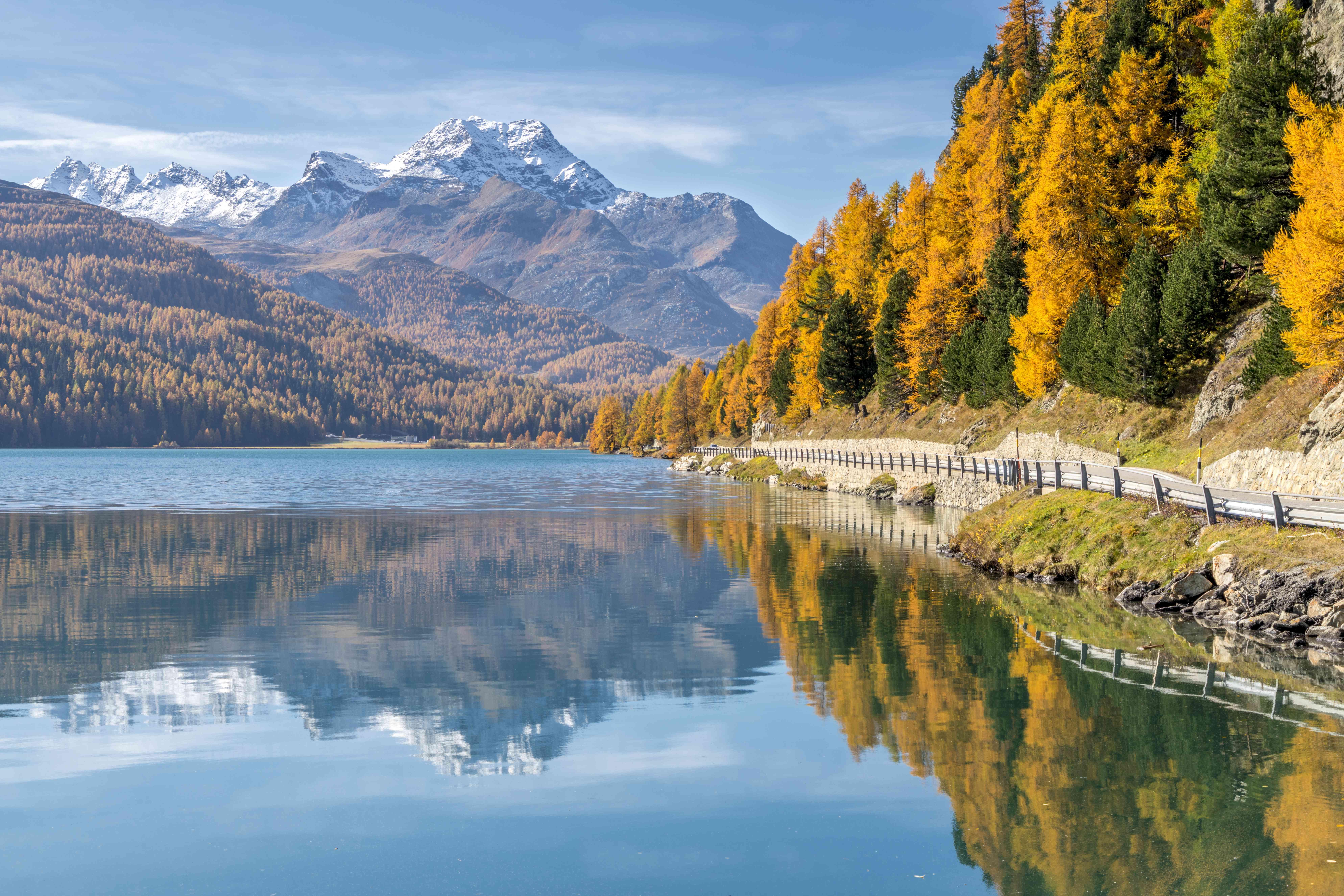 Larch trees mirrored in Lake Silvaplana in autumn, St. Moritz, Switzerland