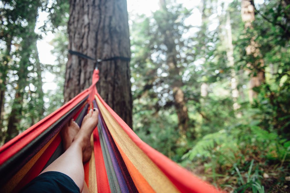 Relaxing on a Mendocino Camping Trip