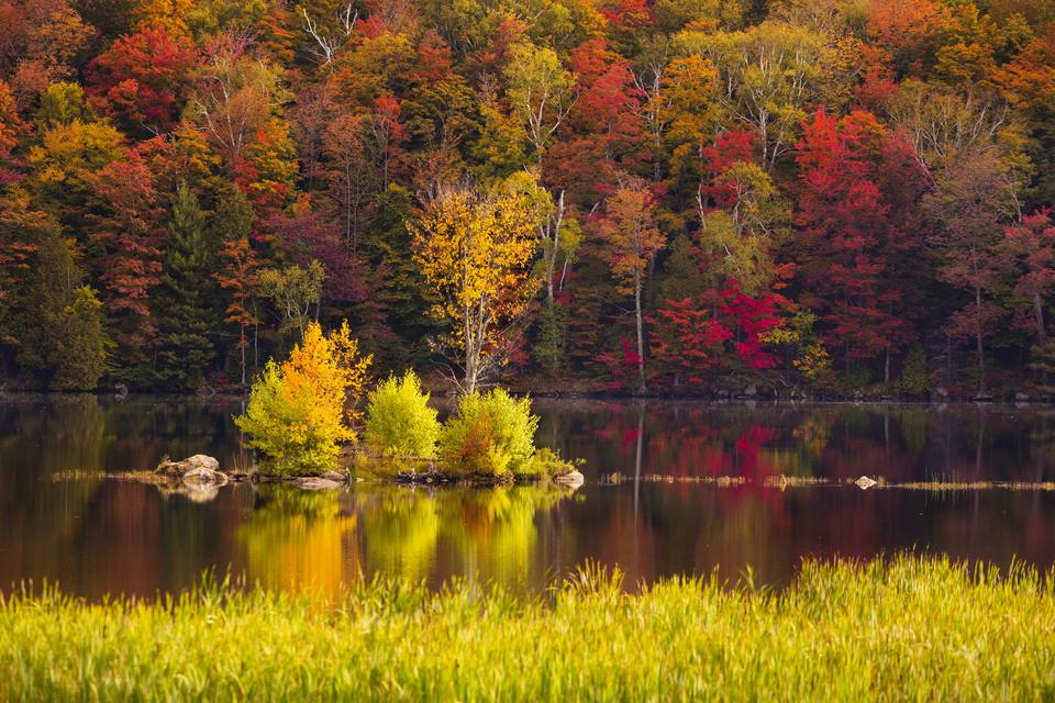 New England Fall Foliage Tours The Best Guided Trips