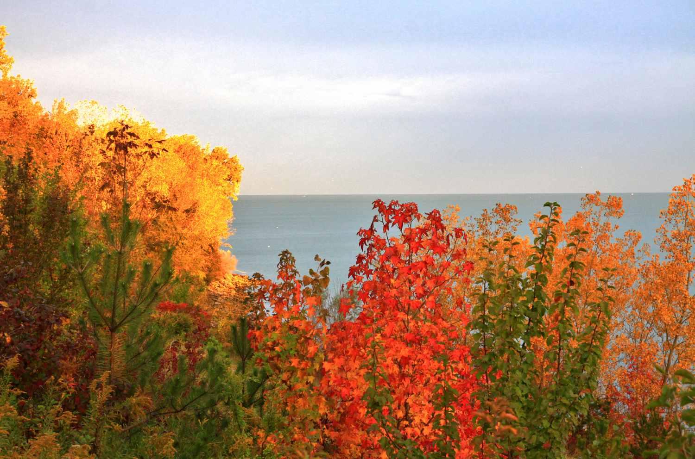 Lake Erie Autumn Colors