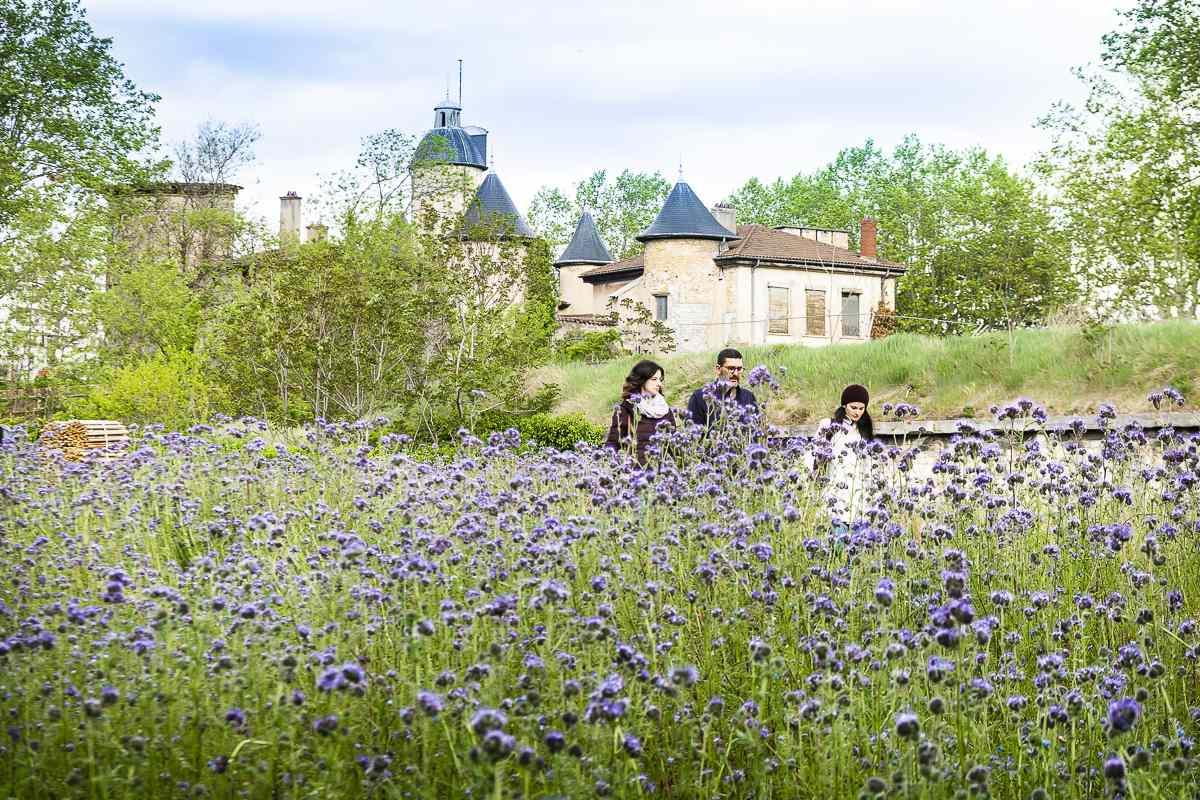 Family of three walking in a field of purple wildflowers at Parc Blandan, Lyon