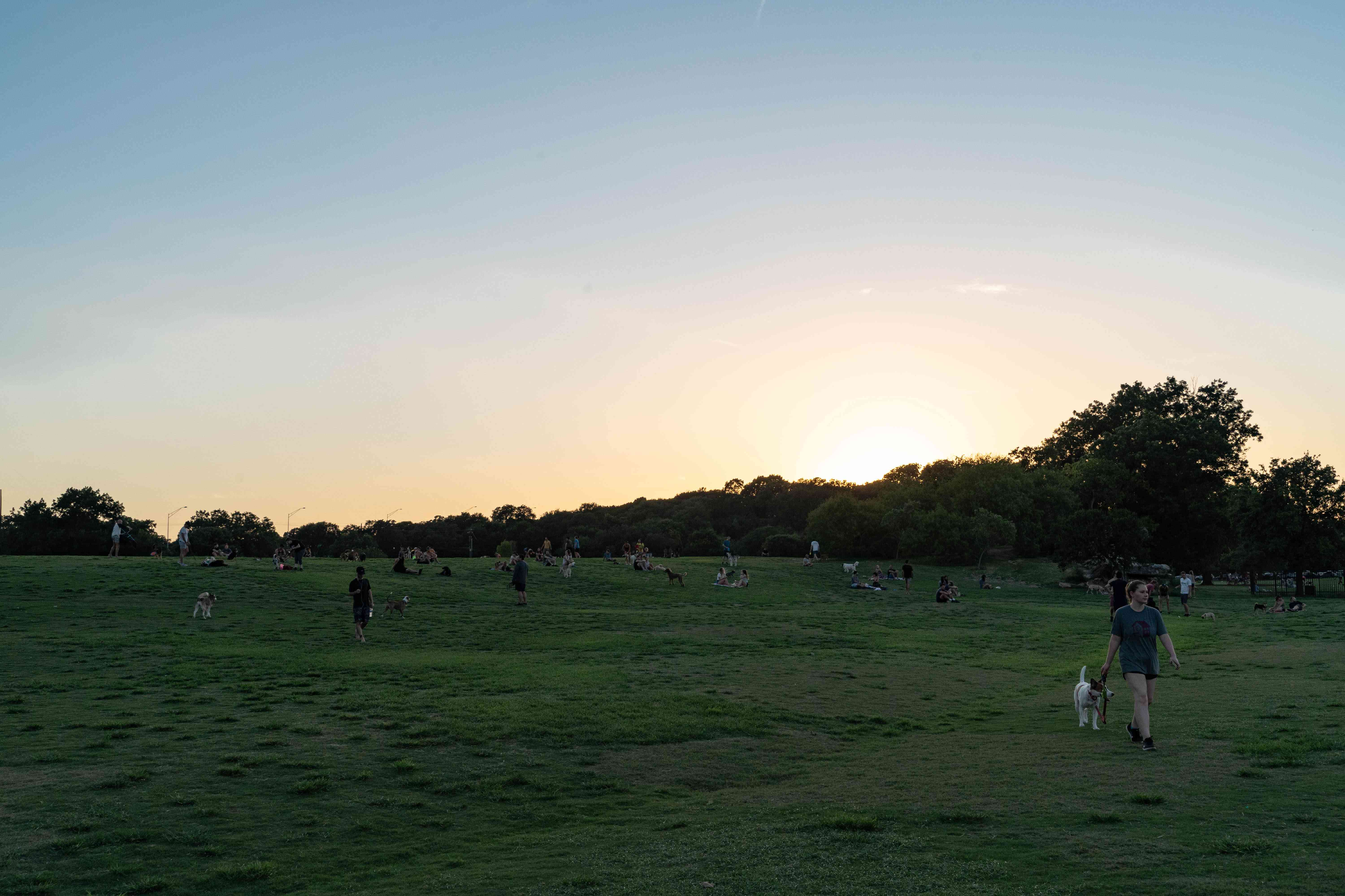 People walking through a grassy field in Zilker Park during sunset