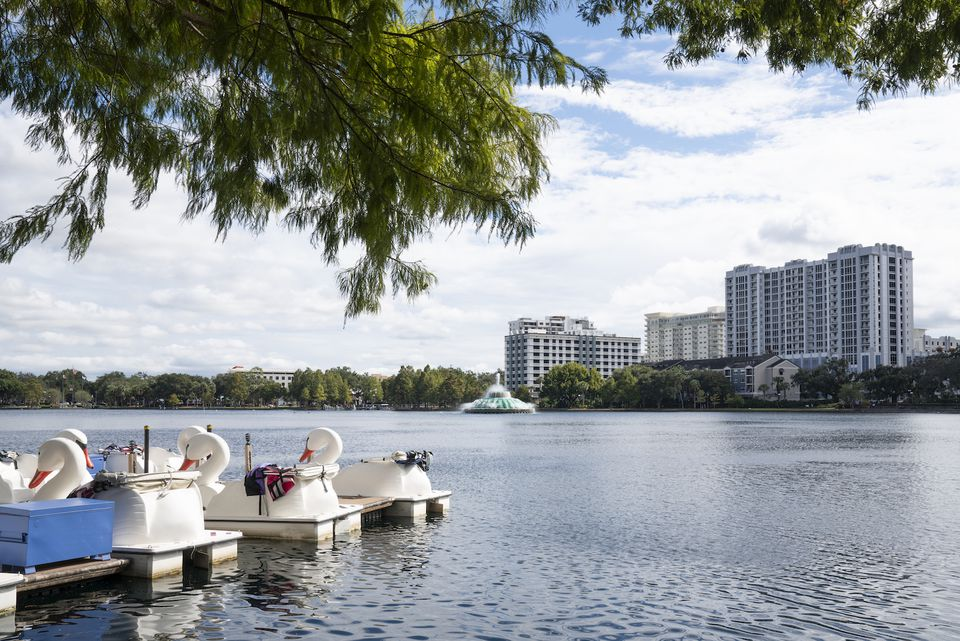 Swan boats docked at Lake Eola Park