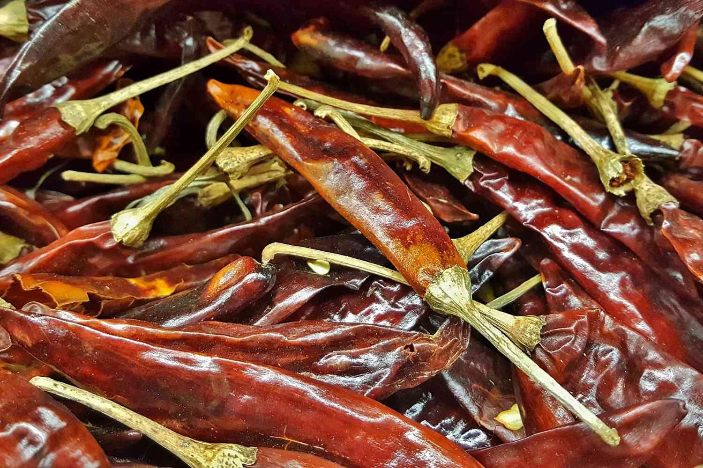 Chiles de Arbol