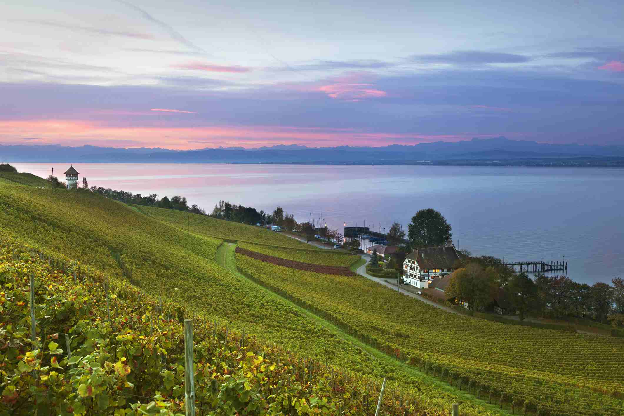 Weinfestival in Konstanz