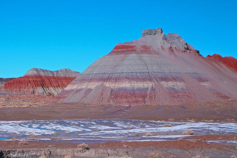 Colorful Petrified Forest