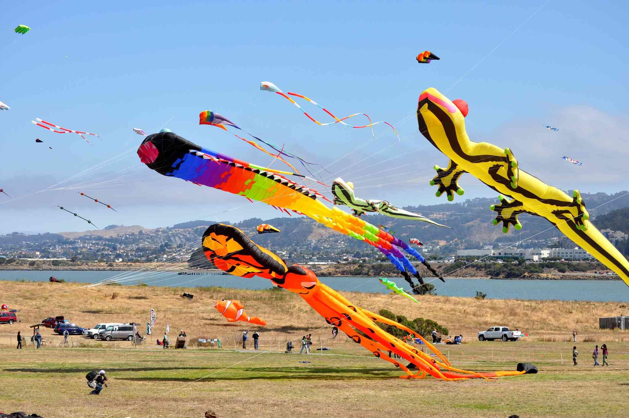regular and enormous kites flying at the Berkeley Marina