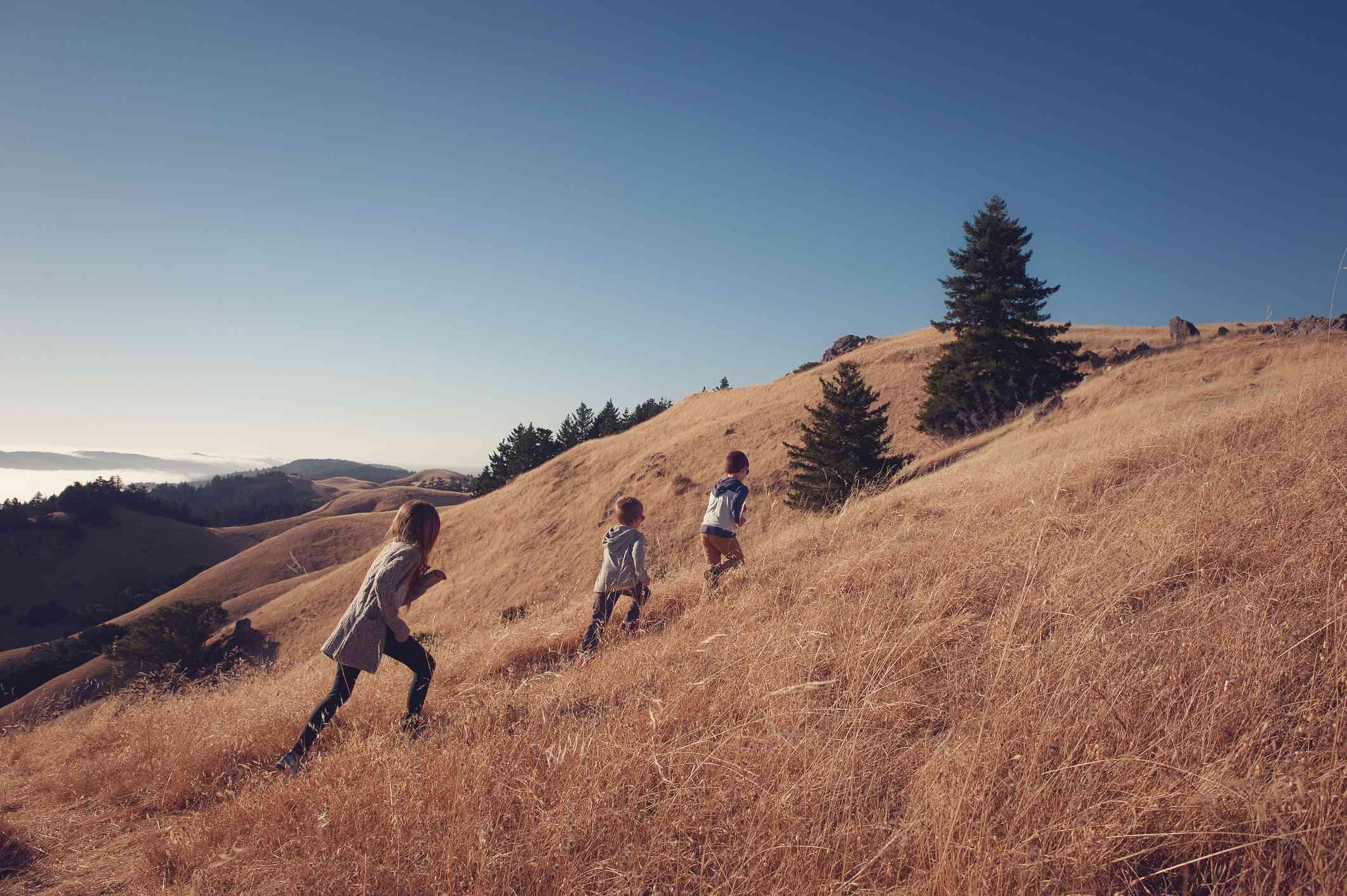 Dos niños y una niña subiendo una colina, Mount Tamalpais, California, Estados Unidos , Estados Unidos - foto de stock