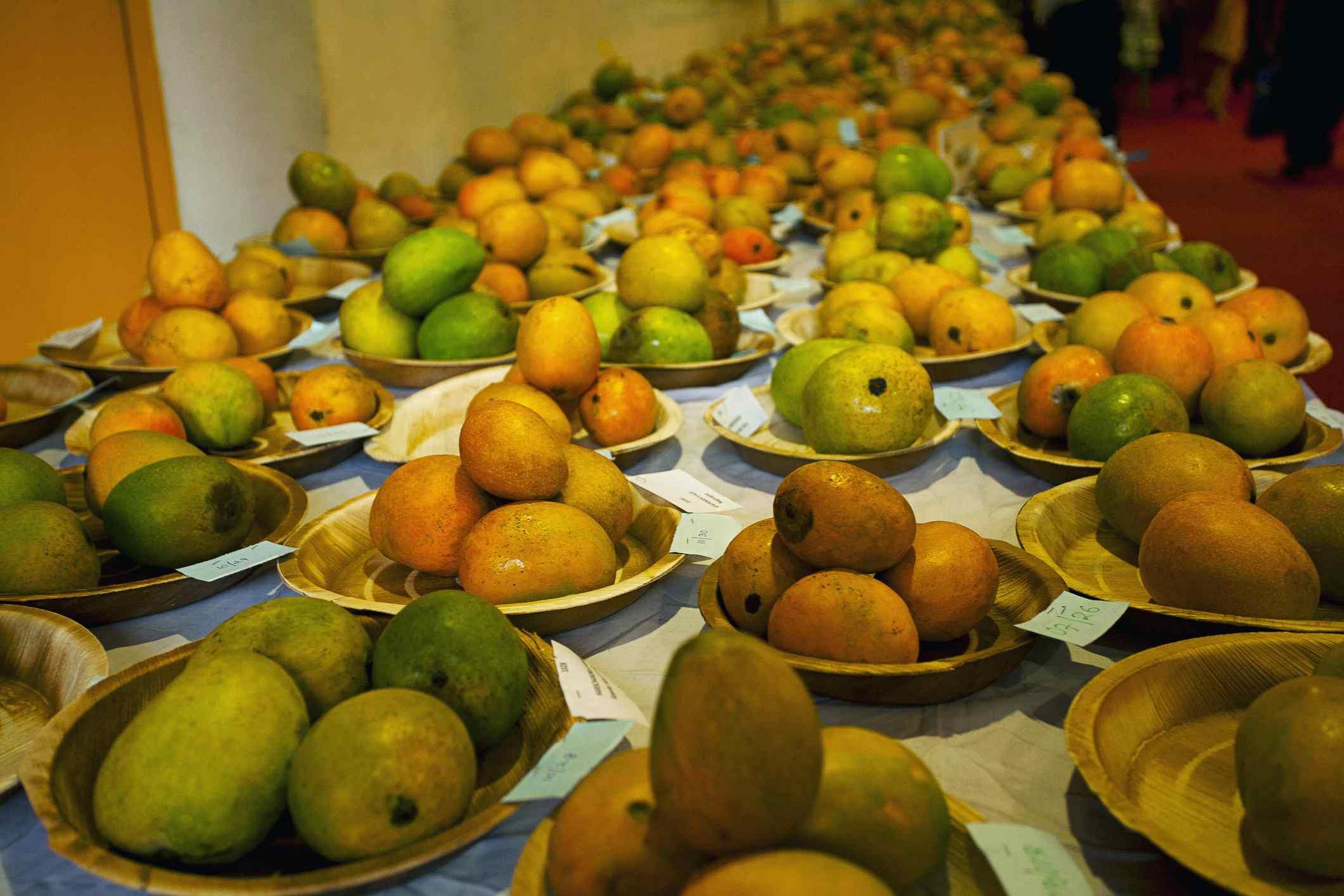 Mangoes on display.