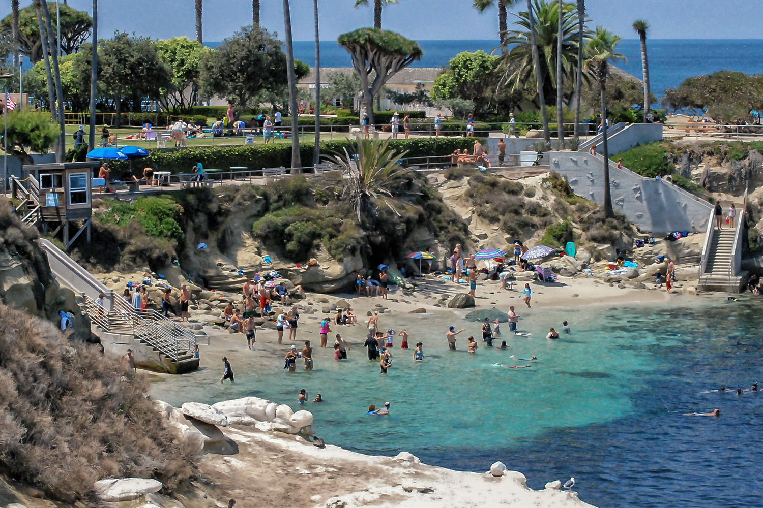 Things To Do In La Jolla For A Day Or A Weekend