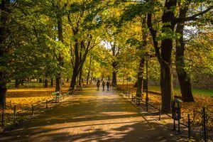 Krakow City Park, Poland