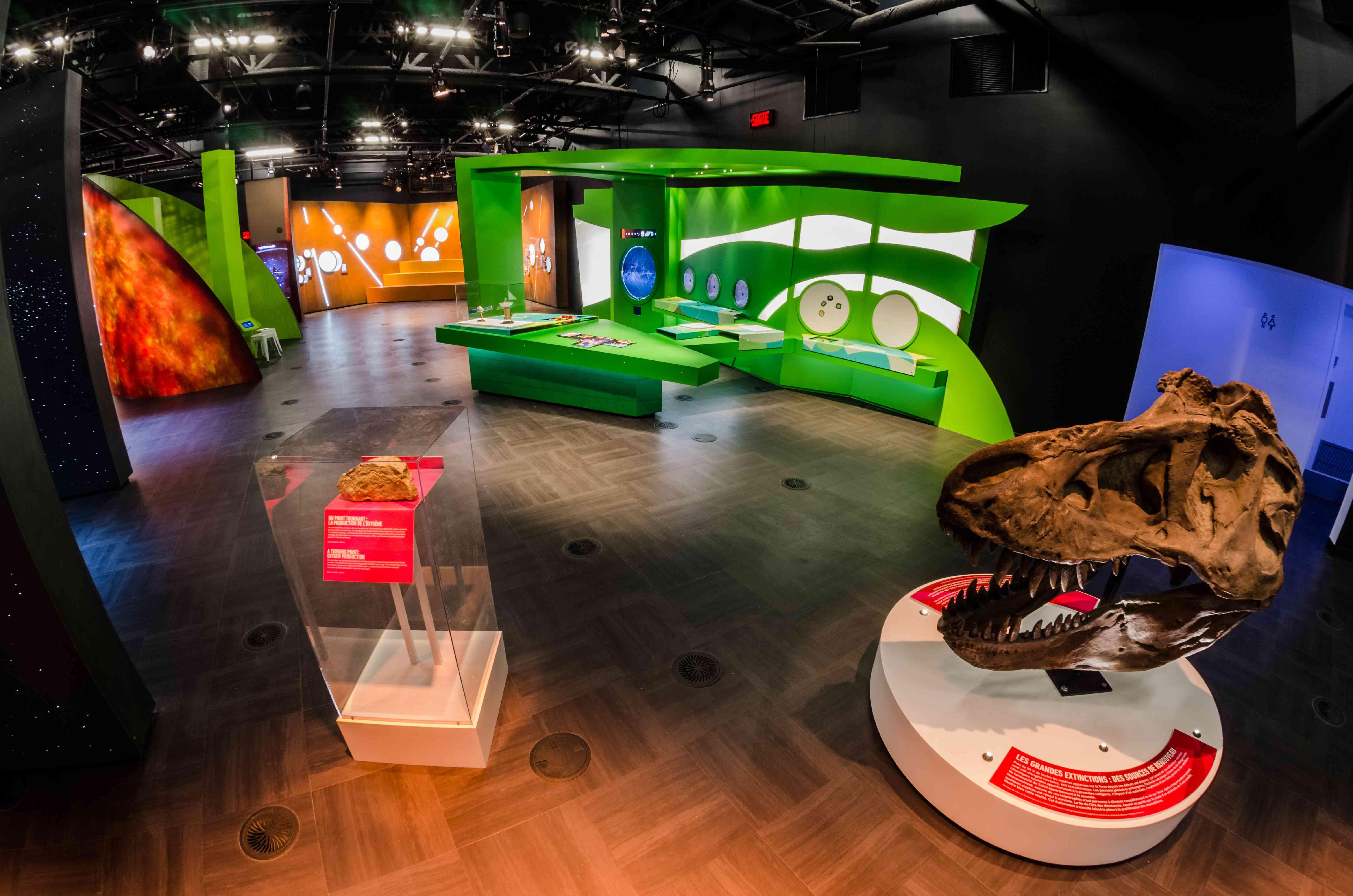 Exhibits in the Planetarium