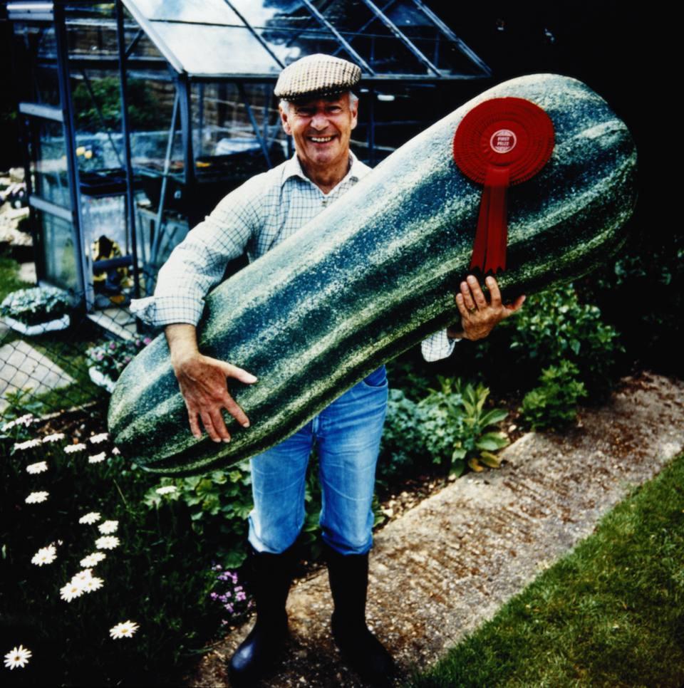 Man holding giant prizewinning marrow in garden