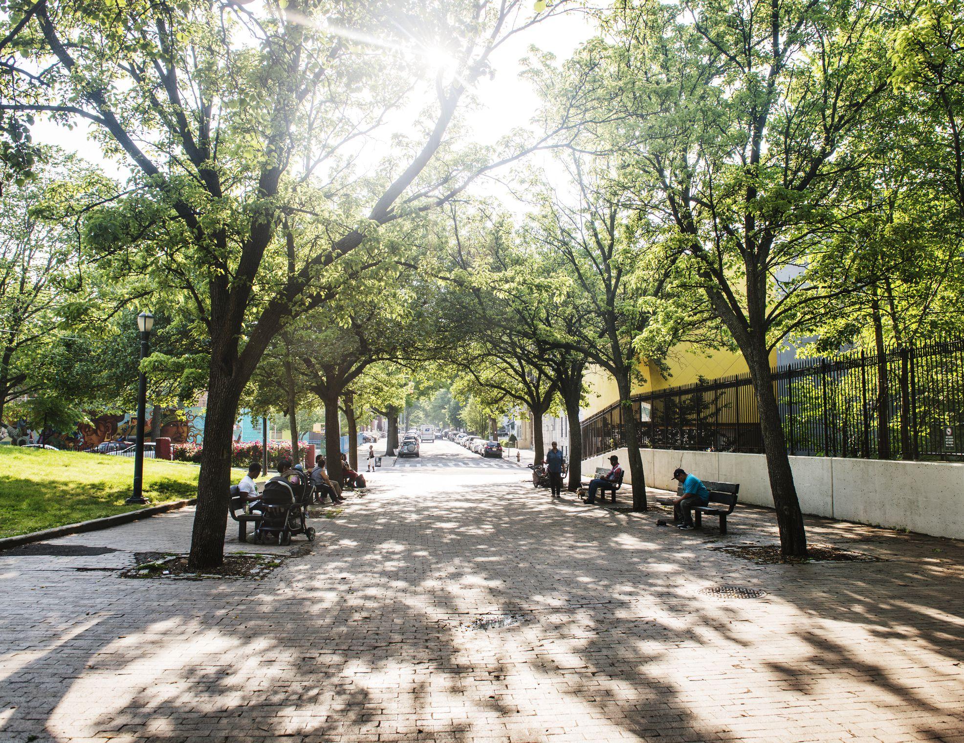 Brower park in Crown Heights, Brooklyn, New York