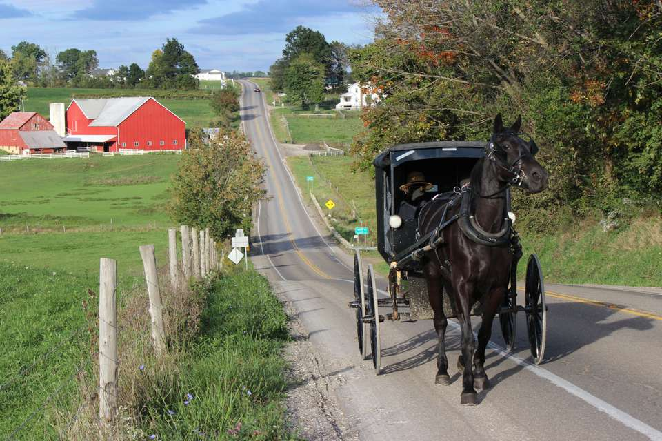 Amish Horse and Buggy Travelling Up a Steep Country Road